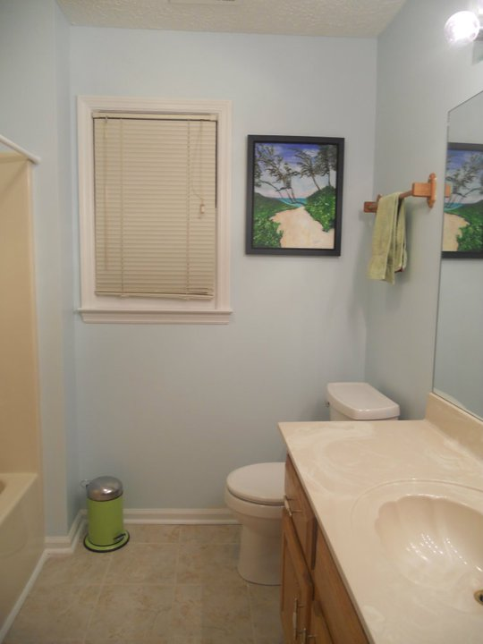 another bathroom update, bathroom ideas, home decor, painting, Before when we moved in we only had a trash can and towels for our guest bathroom