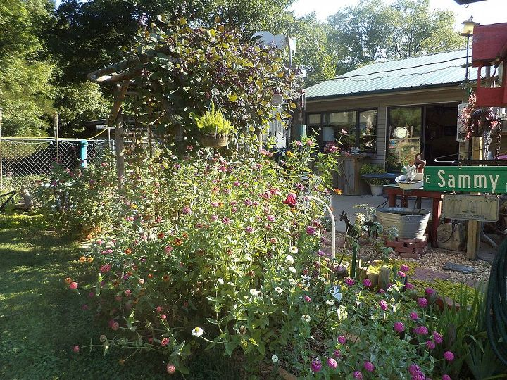 late summer on the patio and back yard, flowers, gardening, outdoor living, patio