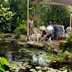 create a tropical dining spot in your backyard, decks, gardening, outdoor living, patio, ponds water features, Family gatherings by the pond create memorable events for everyone