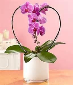 happy valentines everyone, gardening, seasonal holiday d cor, valentines day ideas
