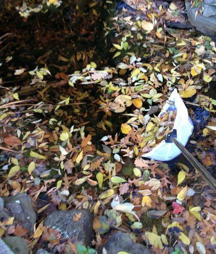 Tip #1 Use a long handled Skimmer Net to remove as many leaves as possible to prevent them from decomposing in the Pond.