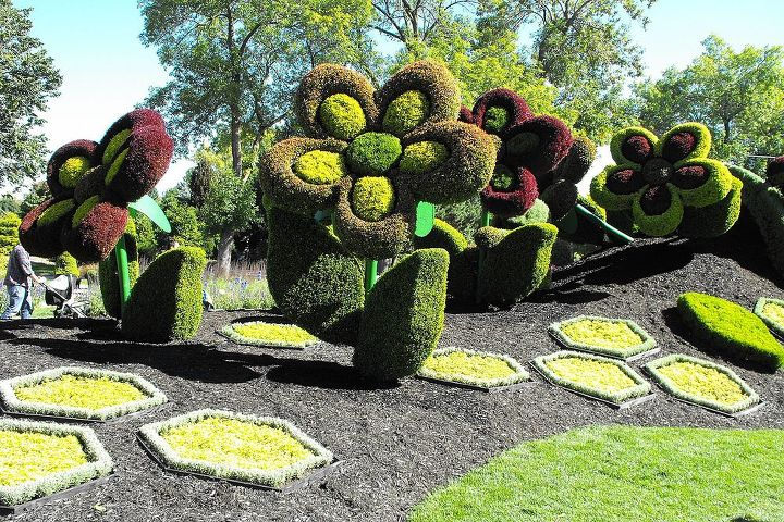 pictures from the mosaic culture exposition in montreal, flowers, gardening, outdoor living, pets animals