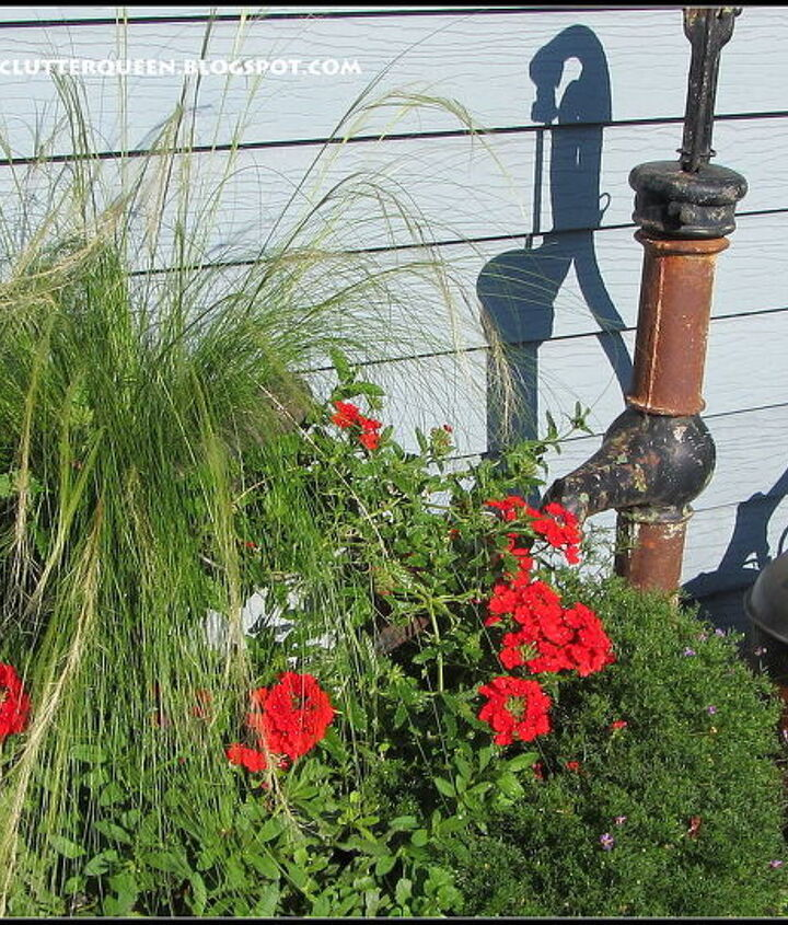 The whiskey barrels next to the pumps are planted with verbena, brachome, ponytail grass, alyssum, bacopa and petunias.  A vintage mop bucket is situated in the center of the oak barrel for a double decker planting.