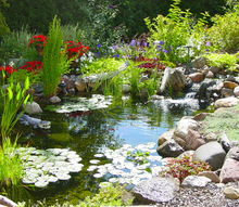 q can anyone give me some good reasons to get a pond just asking, ponds water features, Waterfall Fish Pond Water Gardens Ponds Waterfalls Ecosystem Ponds Pond Plans Streams Outdoor Living Outdoor Life Styles Butterfly Gardens Water Features Bird Baths by Acorn Landscaping of Rochester NY 585 442 6373