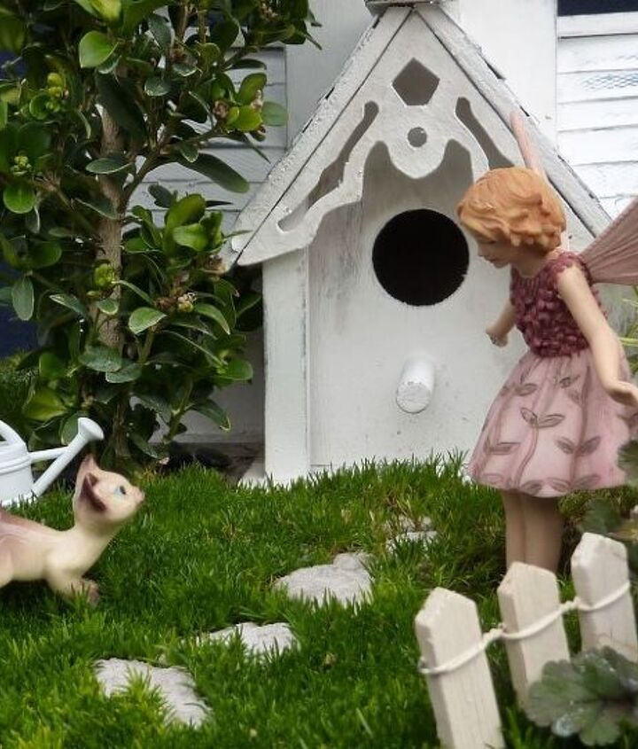 White picket fence and a cat...the perfect garden!