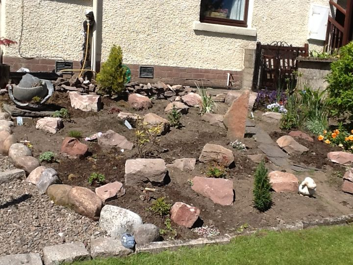 Stones in and some plants