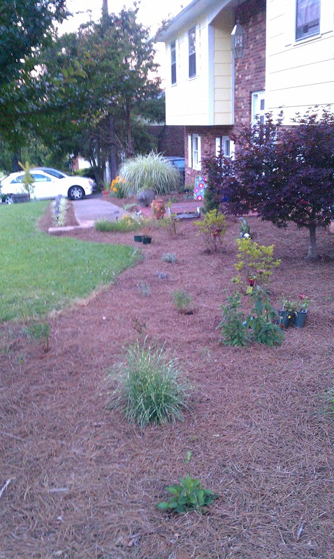 New landscaping spring 2012