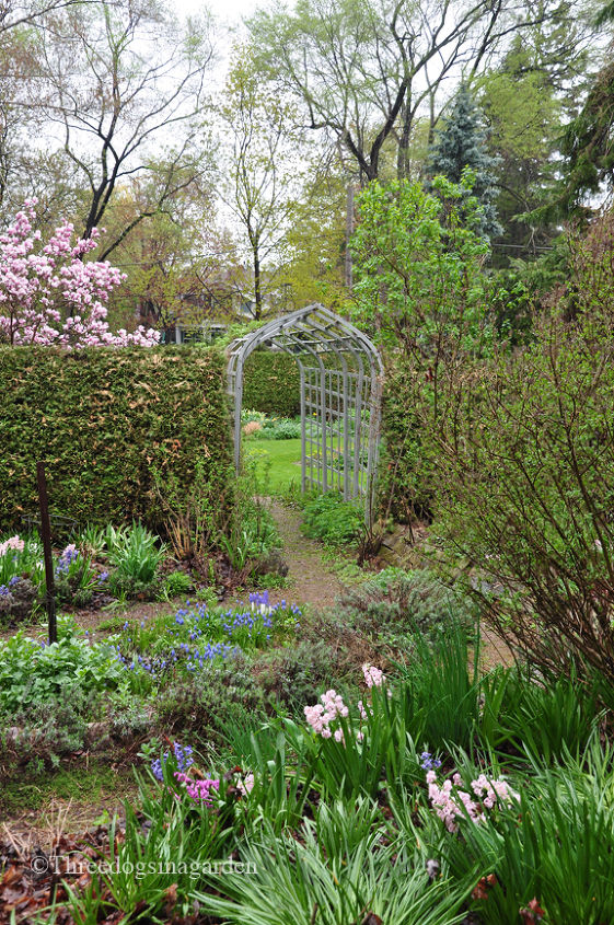 """Looking into the """"Fragrant Garden"""""""