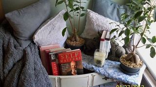 q found some really neat drawers that came out of dresser dresser is missing, cleaning tips, container gardening, gardening, repurposing upcycling, Loaded the shelves with magazines books and lower drawer holds about 15 towels I have access to my favorite throw and my books are near the bed This compliments the FP dresser I purchased several years ago see other photo