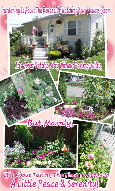 my garden late spring early summer blooms pt 1, gardening