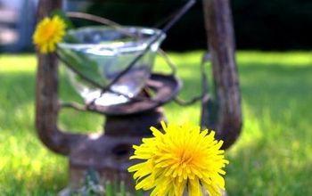 Dandelion Milk - a little antic filled story from the past.