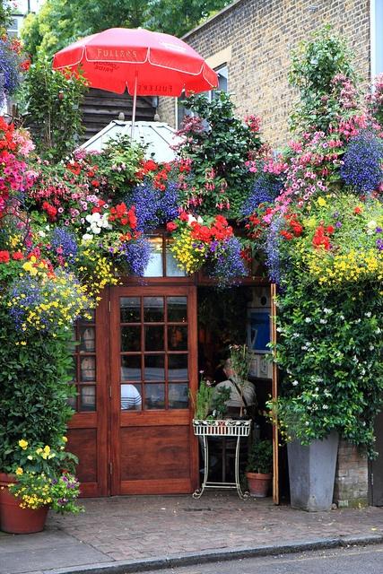store in london, flowers, gardening