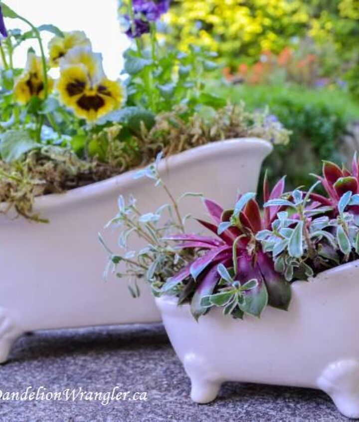 Assorted bathtubs and other ceramic planters.