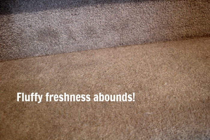 the very best trick to clean stubborn carpet stains, cleaning tips, flooring