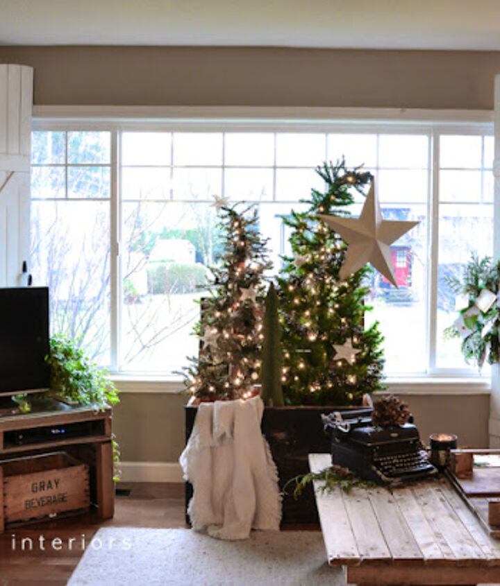 The Christmas tree forest uses little real estate and brings a lovely focal point to the living room this year.