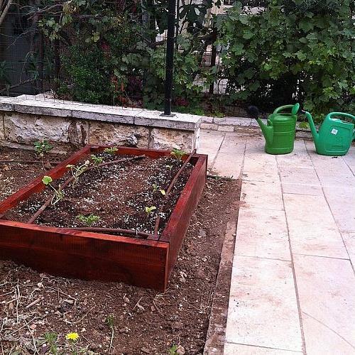 raised garden bed, gardening, raised garden beds