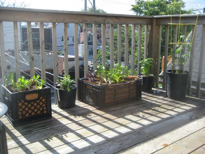 using plastic crates for gardening, gardening, raised garden beds, repurposing upcycling, urban living, unique look for decks or balconies