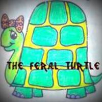 Feral Turtle