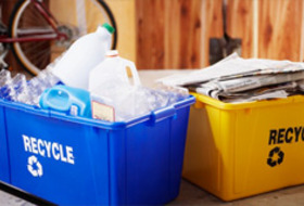 learn how to recycle, go green