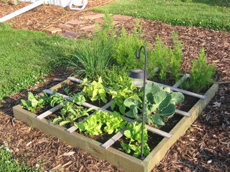 Make your own grow box.