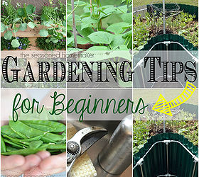 Gardening Tips For Beginners Design