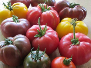 q tomato taste test what varieties have done best for you this summer, gardening