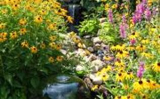 pond stream pondless garden, flowers, gardening, outdoor living, ponds water features, Stream in our Pondless Waterfall at our Display Gardens