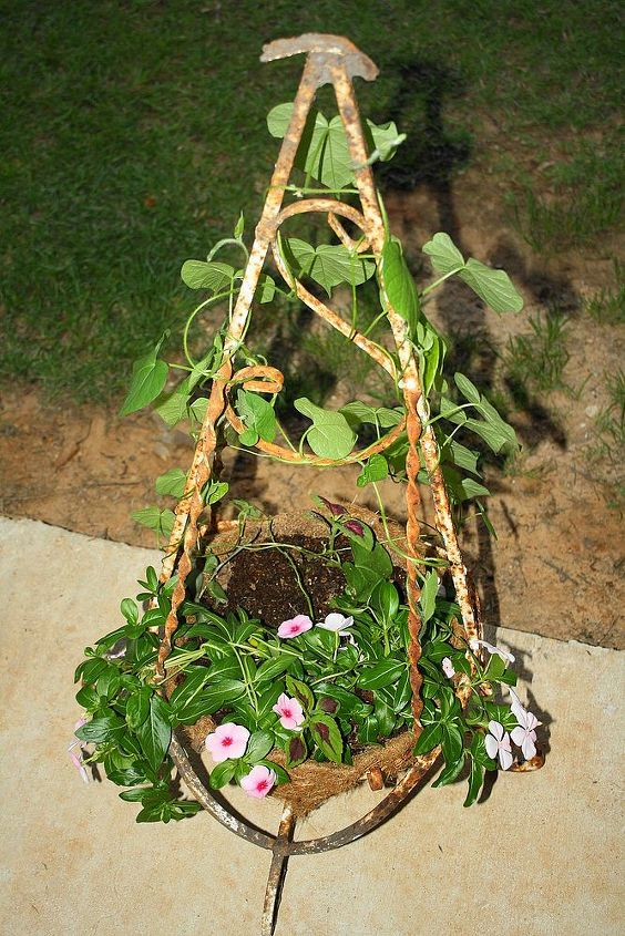 our potted plants, flowers, gardening