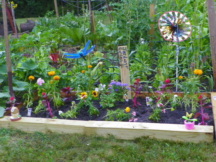 i saw the toddlers garden and wanted to share my daughters garden, gardening
