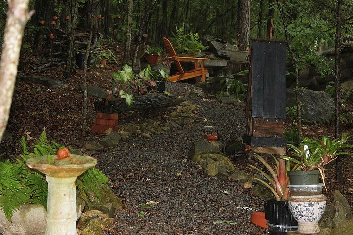 Another view of woodland garden.