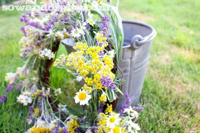 Combine Chamomile with Lavender to create this fresh herb wreath and your house will smell amazing:  http://www.sowanddipity.com/fresh-herb-wreath/